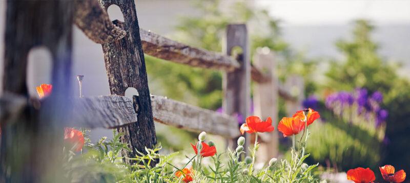 Fericirea, liniștea, împlinirea de sine, numeşte așa cum vrei cuvântul în spatele căruia se ascund o mulţime de emoţii minunate.