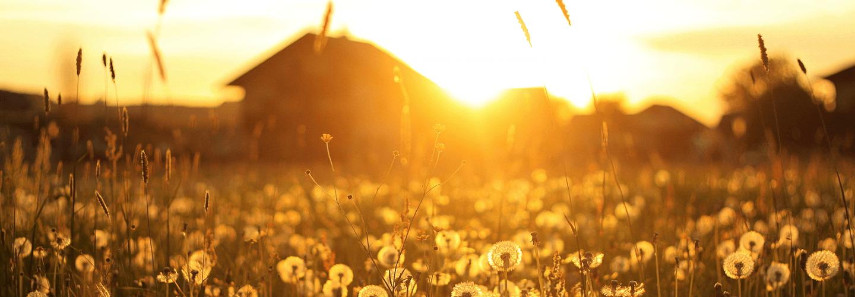 Ultimul răsărit de soare